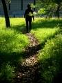 緑の小径を往く@京都御苑