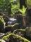 新緑の渓谷@京都北山