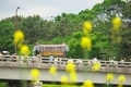 橋を渡る葵祭の御所車@出町柳