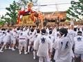 下御霊神社と神輿@下御霊神社還幸祭