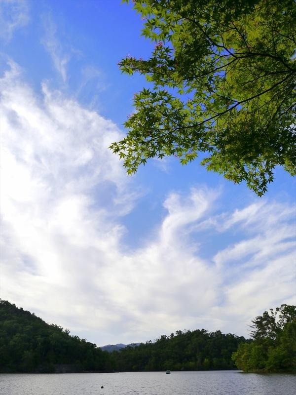 青空と雲と新緑@宝ヶ池