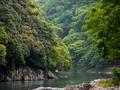 緑濃い保津峡@嵐山