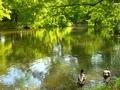 緑の世界へ@京都府立植物園