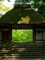 緑の窓@法然院