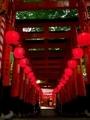 伏見稲荷本宮祭2