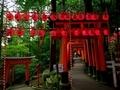 伏見稲荷本宮祭4