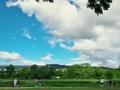 夏空の鴨川