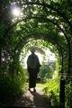 アーチの外へ@京都府立植物園