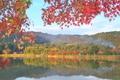 秋の広沢池