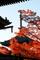 紅葉に彩られる三重塔@真如堂