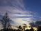 彩雲拡がる@京都府立植物園