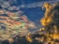彩雲vs暗雲@京都府立植物園