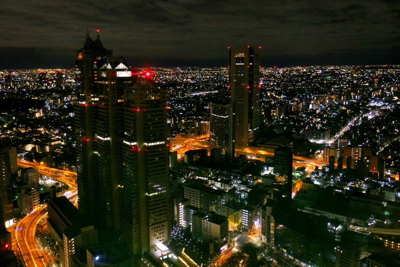 2020年の夜明けを待つ東京@新宿都庁展望台