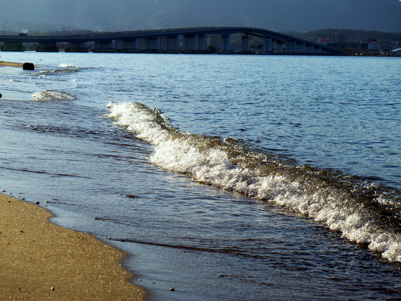 琵琶湖大橋を望む水際@琵琶湖