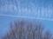 雲の造形@京都府立植物園