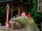 狛ネズミ@大豊神社