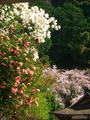花溢れる大豊神社