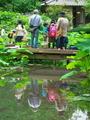 蓮池にて@京都府立植物園