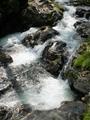 久多川の流れ