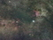 白鳥座の散光星雲@花脊峠