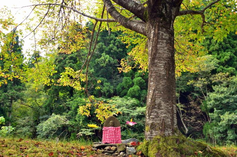 木の下のお地蔵さん@朽木針畑