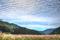 ススキの原に鰯雲@朽木針畑