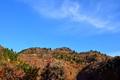 色づく秋山@おにゅう峠
