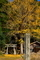 朽木桑原蛭子神社