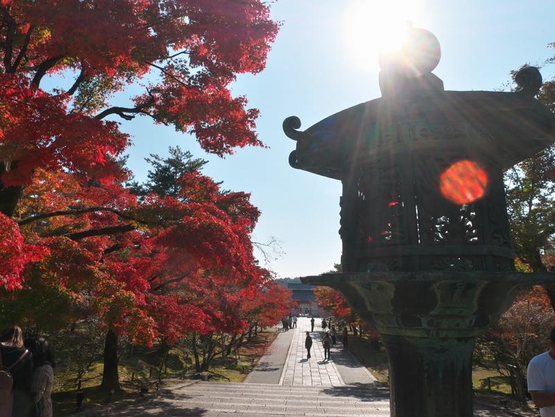 秋の仁和寺