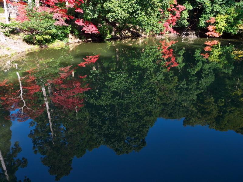 池の秋@後宇多天皇陵