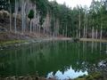 ヒノコの池