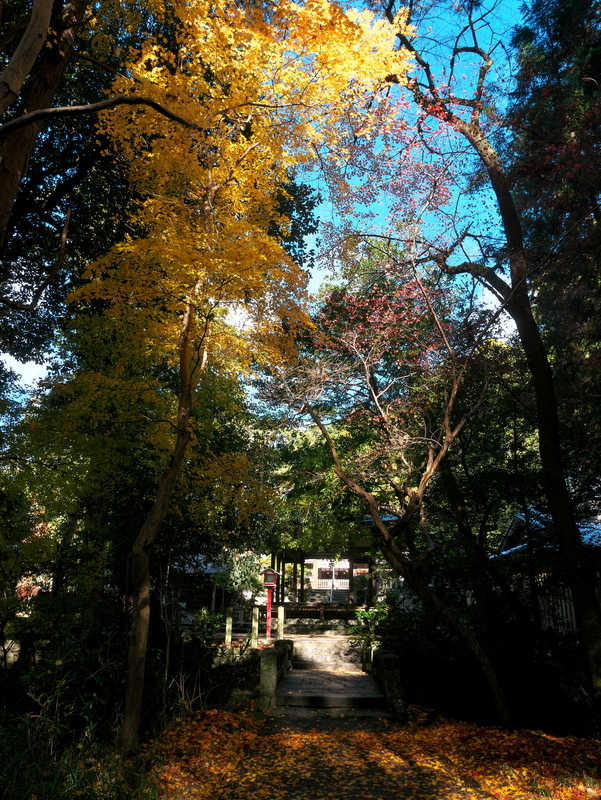 鷺森神社にて