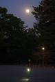 月夜の京都御苑