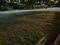 斜陽に照らされる地面@京都御苑