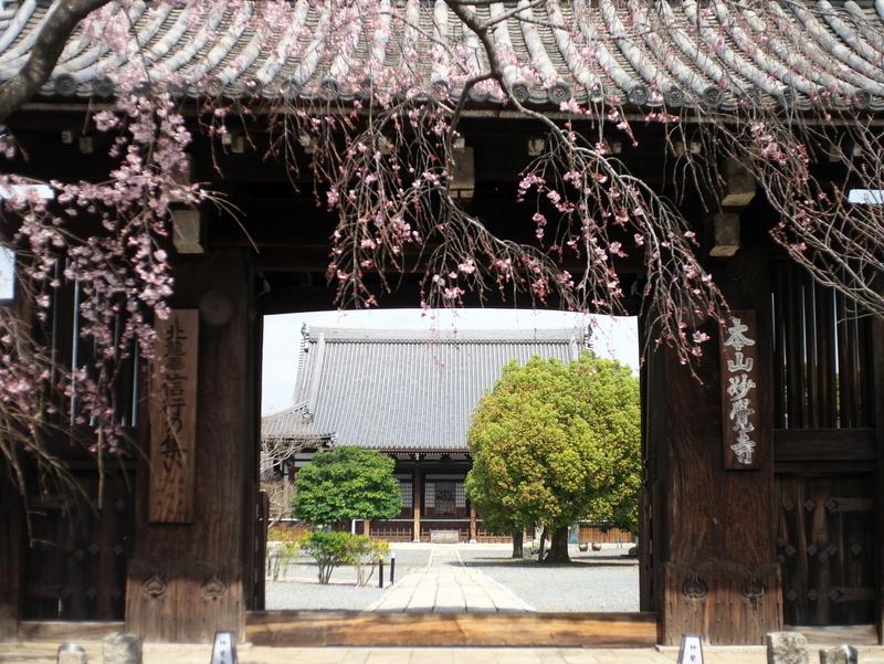 妙覚寺門前