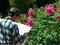 花と向き合う@京都府立植物園