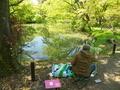 新緑を描く@京都府立植物園