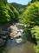 新緑の清滝