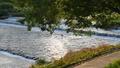 賀茂川の流れ