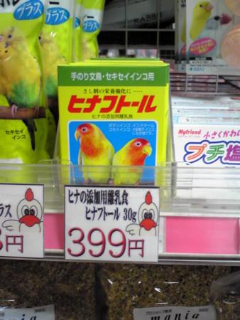 f:id:usa-kounosuke:20081010194635j:image