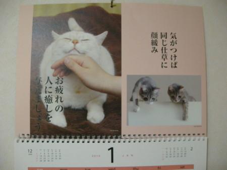 f:id:usa-kounosuke:20100101220026j:image:w360