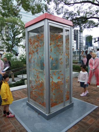 f:id:usa-kounosuke:20111023151237j:image:w360