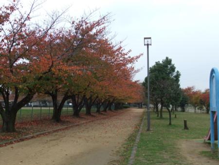 f:id:usa-kounosuke:20111123150845j:image:w360