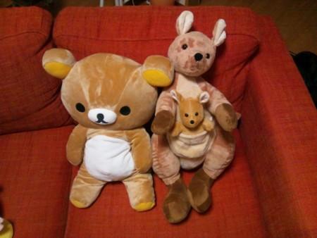 f:id:usa-kounosuke:20111204212613j:image:w360