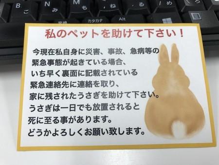 f:id:usa-kounosuke:20190405160355j:image
