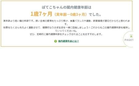 f:id:usa-kounosuke:20190920095622j:image