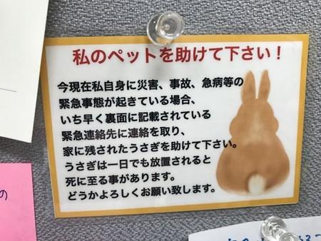 f:id:usa-kounosuke:20191207160102j:image