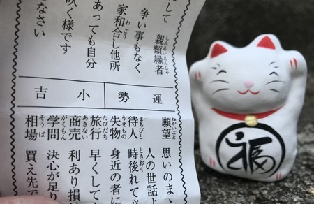 f:id:usa-kounosuke:20210104153856j:image