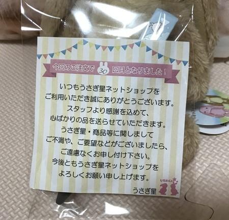 f:id:usa-kounosuke:20210316101509j:image