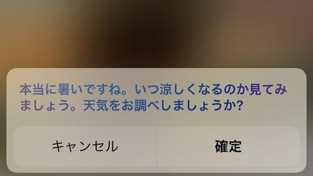 f:id:usa-kounosuke:20210721131239j:image